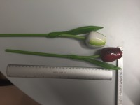 Wooden tulip rose 3
