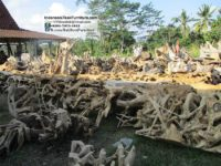 Teak Root Furniture Indonesia