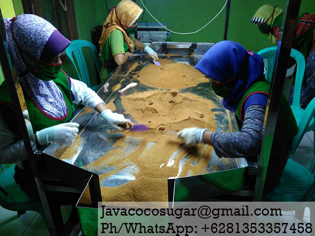 Organic Coconut Sugar Factory in Java Indonesia